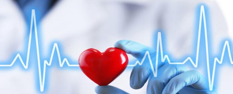 Best Cardiology